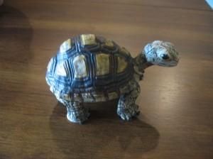turtles 013